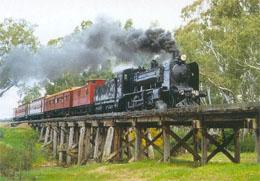 The Maldon Steam Train